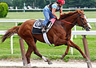 Haskell Should Impact 3YO Championship