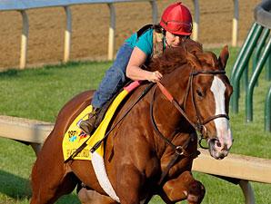 Shackleford - Churchill Downs April 30, 2010.