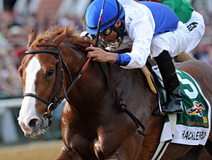 Shackleford Learned About Racing in S.C.
