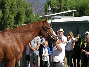 Shackleford meets his fans at Santa Anita on October 27, 2012.
