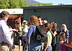 Shackleford Greets His Fans at Santa Anita