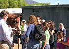 Shackleford Greets His Fans at Santa Anita