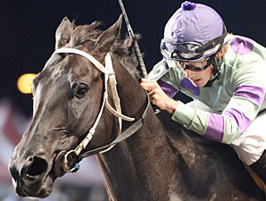 Shadowbdancing wins the 2012 Prairie Meadows Handicap.
