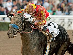 Shakin It Up wins the 2013 Malibu Stakes.