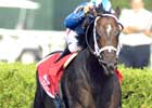Shakis Primed to Shake Up Field in Shadwell Turf Mile