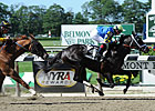 Shanghai Bobby Favored in Saratoga Special
