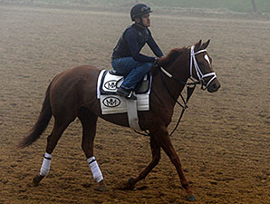 Shanon Nicole jogs at Pimlico May 15.