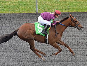 Share the Sugar - Maiden Win at Keeneland, April 4, 2014.