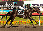 Shared Belief Rumbles in Hollywood Prevue
