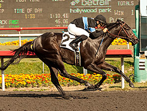 Hollendorfer to Work Shared Belief Friday