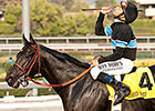 Pedigree Analysis: Shared Belief