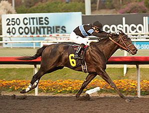Shared Belief Looking Beyond Speedy Family