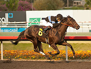 Tentative Derby Plan Set for Shared Belief