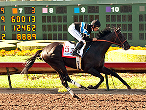 Shared Belief wins the 2014 Los Alamitos Derby.