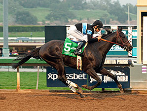 Shared Belief wins the 2015 San Antonio.