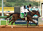 Shared Belief Looks Headed to Oaklawn