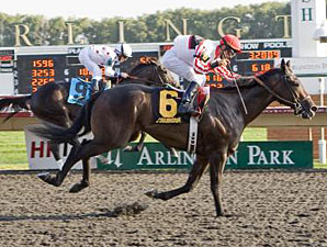 El Padrino Heads 11-Horse Field in Risen Star