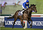 Sharestan Aims to Step Up in Al Rashidiya