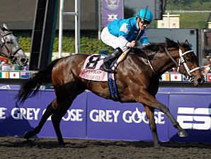 She Be Wild wins the 2009 Breeders' Cup Juvenile Fillies.