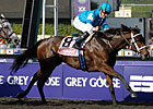 Champion She Be Wild Injured, Will Miss Oaks