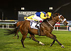 Shea Shea Smashes His Meydan Course Record
