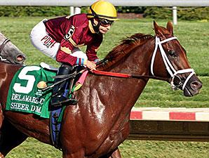 Sheer Drama wins the 2015 Delaware Handicap.