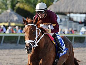 Sheer Drama wins the 2015 Royal Delta Stakes.