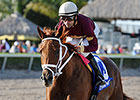 No Drama for Sheer Drama in Royal Delta Win