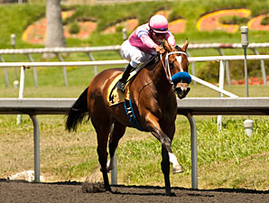 Seven Set for Sorrento; Gomez Has 3 Mounts