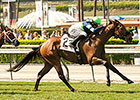 First Graded Stakes Up for Grabs in Senorita