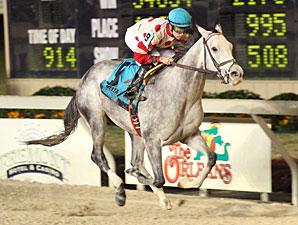 Shezacrazygirl wins the 2009 Louisiana Jewel Stakes.