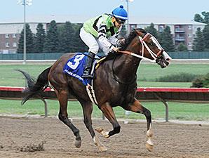 Shock Hazard wins the 2015 Dan Johnson Memorial Sprint Stakes.