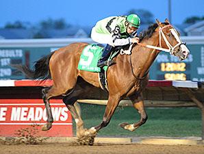 Shock Hazard wins the 2014 Gray's Lake Stakes.