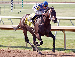 Shocktime wins the 2011 TTA Sales Futurity Fillies Division.