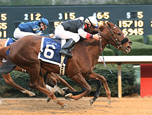 Grade I Winner Shotgun Gulch Injured, Retired
