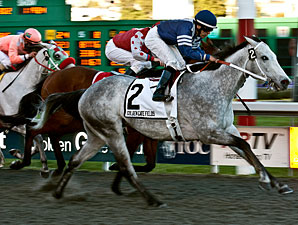 Shudacudawudya wins the 2012 Albany.