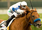 Sidney's Candy to Pass Del Mar Derby