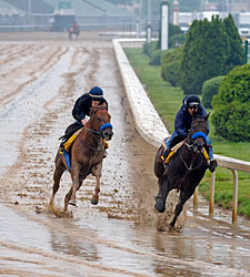 Despite Rain, Most Derby Works Go As Planned