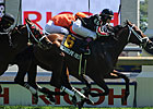 Turf Runners Battle in Highlander, Singspiel