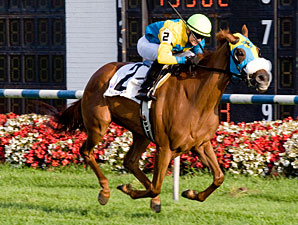 Silent Candy wins the 2010 Hatoof.