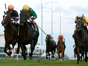 Silent Star wins the 2014 Victoriana Stakes.