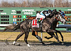 Wellman OK with Longshot Status for Silsita