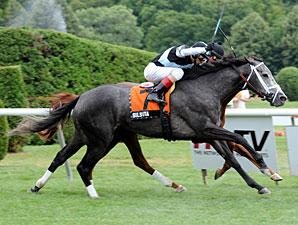 Silsita wins the 2013 My Princess Jess Stakes.