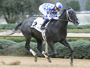 Derby Trial Kicks Off Churchill Meet