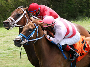 Silver Cloud Determined in Bob Umphrey Win