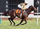 Speedy Silver Max Heads American Derby