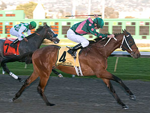Silver Medallion Finds Gold in El Camino Real