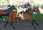Spiral Stakes Receives 131 Nominations