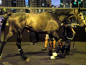 Silver Pond arrives in Hong Kong, December 3, 2011.