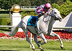 Silverfoot Favored in Kentucky Cup Turf 